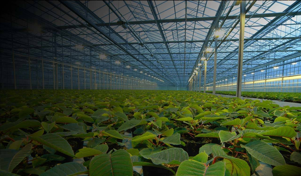 farm automation sensors, Greenhouse automation ; IOT greenhouse sensor solutions